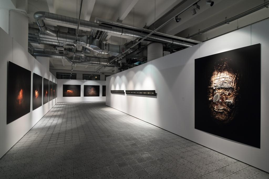zprava: Tvářnost 2012, autoportrétní scan, plátkové zlato, dibond, 200 x 150 cm