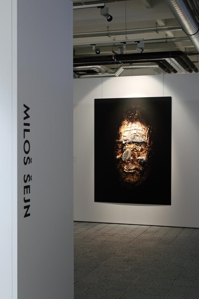 Tvářnost 2012, autoportrétní scan, plátkové zlato, dibond, 200 x 150 cm