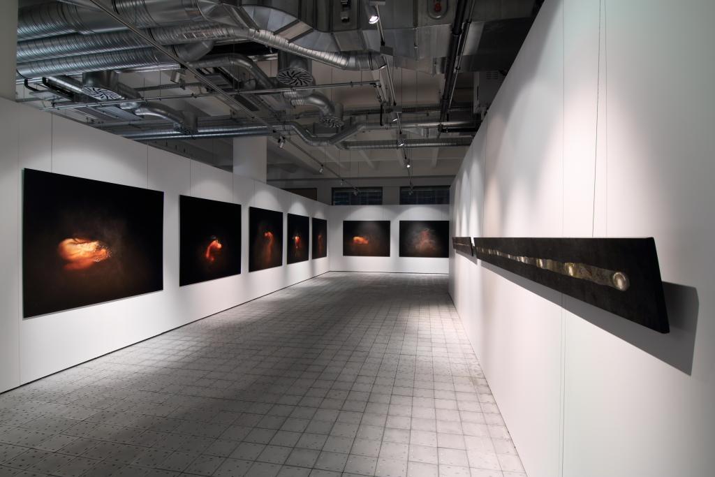 zleva: Rudé tělo, 2005(výběr ze série), digitální fotografie, dibond, 150 x 200 cm
