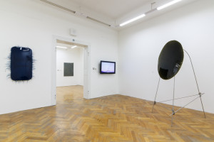 pohled do expozice, kurátorka Terezie Petišková
